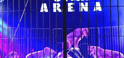 Cyrk Arena Rydułtowy